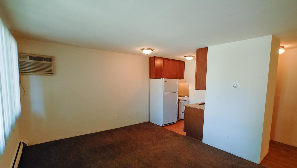Innovative-Properties-2323 Garfield Avenue S Apt 6-02
