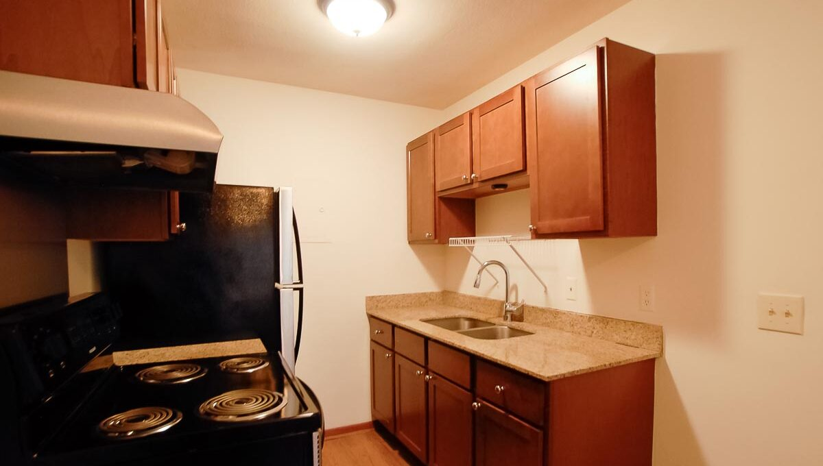 Innovative-Properties-2537 Emerson Ave S #201-01