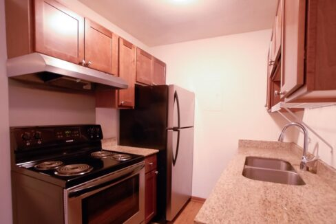 Innovative-Properties-2537 Emerson Ave S #201-02