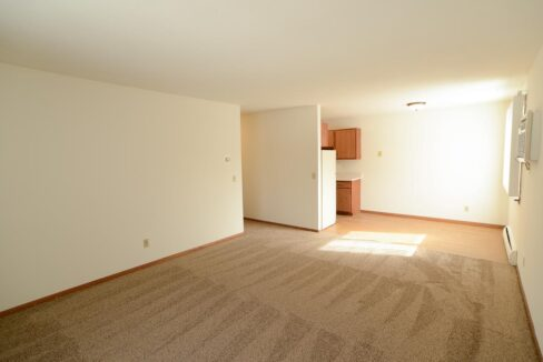 Innovative-Properties-3449 Harriet Ave Apt 201-11