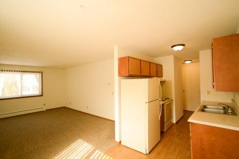 Innovative-Properties-3449 Harriet Ave Apt 201-13